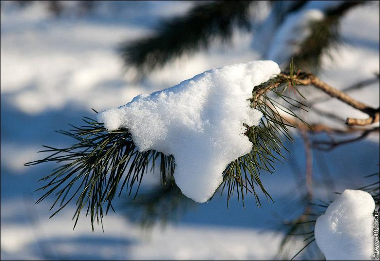 """Результат пошуку зображень за запитом """"сніг навантажувати"""""""